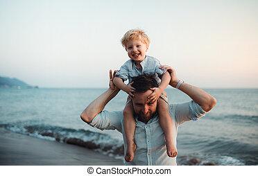 地位, 男の子, よちよち歩きの子, 夏, 父, 休日, fun., 浜, 持つこと