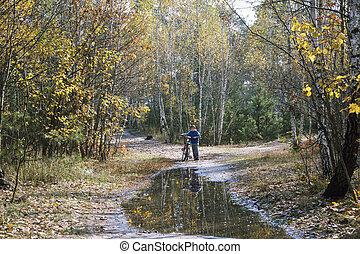 地位, 男の子, わずかしか, 彼の, 自転車, 秋の森林