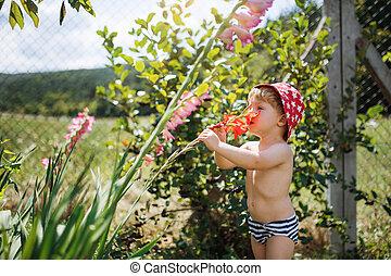 地位, 男の子, 庭, summer., 屋外で, 小さい, 帽子