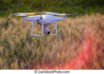 地図を描くこと, 小麦, の上, 飛行, フィールド, 無人機