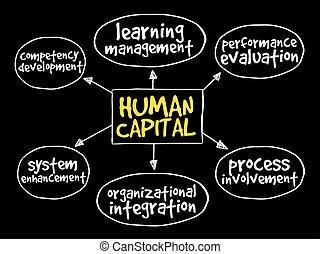 地図, 心, 人的資本