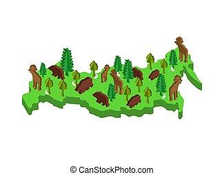地図, 等大, 植物相, ベクトル, 動物動物相, plants., ロシア, mainland.