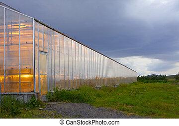 地熱, 温室