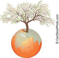 地球, -, リンゴの木