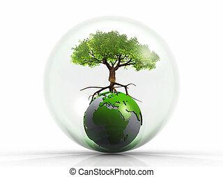 地球, 木, 泡