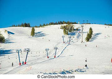 坂, snowboarding, スキー, 人々