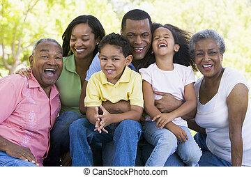 坐, 微笑, 大家庭, 在戶外