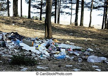垃圾, 在中, 森林, 问题, 在中, 环境