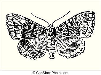 型, 彫版, 蝶