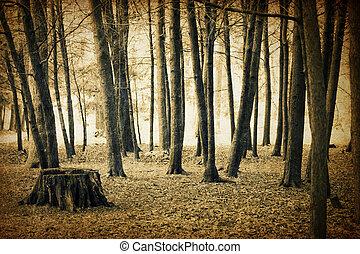 型, 森林, 背景