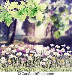 型, 花, 背景, 春