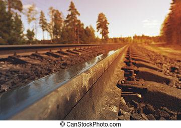 型, 鉄道 トラック, 森林