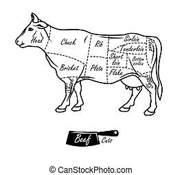 型, beef., 肉屋, 印刷である, アメリカ人, 切口, 案, hand-drawn