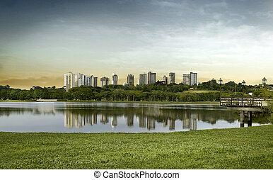 城市的風景