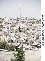 城市, 猶太人, 阿拉伯人, diveded, hebron, 在之間