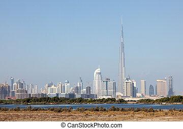 城市, 迪拜, 圣所, 前景, 野生动物, 地平线