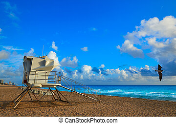 城砦lauderdale, 浜, 日の出, フロリダ, 私達