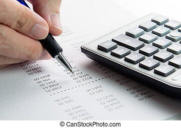 報告, 財政