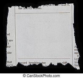報紙剪下的資料