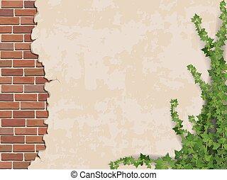 壁, ツタ, コンクリートれんが