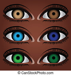 変形, 人間の目