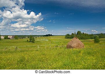 夏天, 乾草堆, 草地