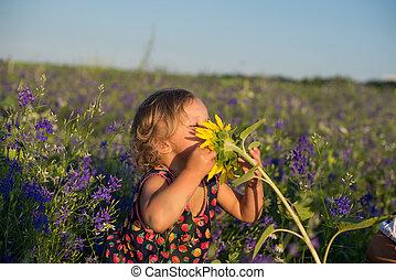 夏天, 孩子, 领域, 向日葵, 漂亮