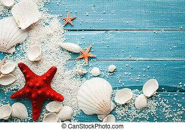 夏天, 海, 背景, -, 殼, 以及, 星
