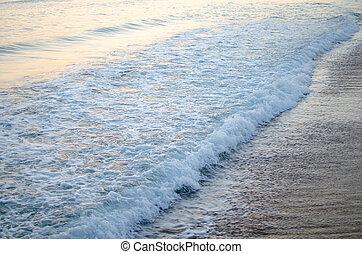 夏天, 海, 背景。