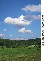 夏天, 牧場