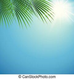 夏天, 葉子, 陽光普照, 棕櫚, 背景, 天
