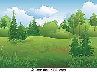 夏天, 風景, 森林