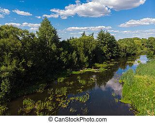 夏天, 风景, 带, 河, 在中, russia
