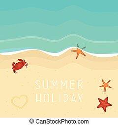 夏季休暇, 浜, カニ, ヒトデ