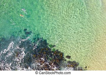 夏, かい, サーファー, 波, 浜, から