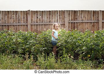 夏, わずかしか, 庭, 女の子