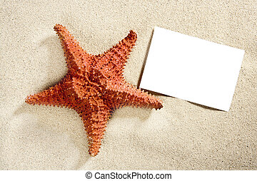 夏, ヒトデ, 休暇, 砂のペーパー, ブランク, 浜