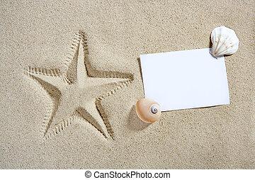 夏, ヒトデ, 殻, 砂のペーパー, ブランク, 浜, パイント