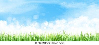 夏, フィールド, 広く, 空, 抽象的, 背景, 草