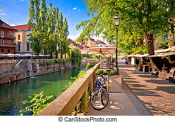 夏, プロムナード, 緑, riverfront, 通り道, ljubljana, 光景