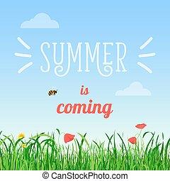 夏, ポスター, イラスト, 蜂, フィールド, ベクトル, flying., 言葉, 到来, 花