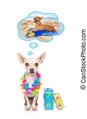 夏 休暇, 犬
