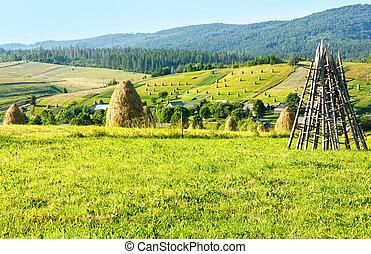 夏, 山, (carpathian, haystacks, ukraine), 田園, 光景