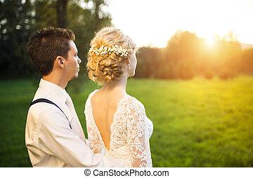 夏, 恋人, 結婚式, 牧草地, 若い