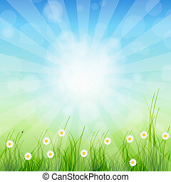 夏, 抽象的, 背景, ∥で∥, 草, そして, チューリップ, に対して, 日当たりが良い, sky., ベクトル,...