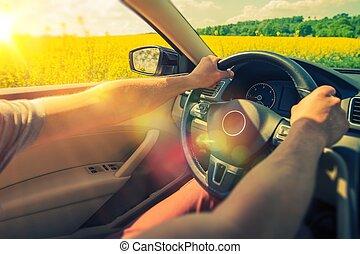 夏, 旅行, 自動車