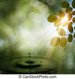 夏, 朝, 中に, ∥, forest., 抽象的, 自然, 背景