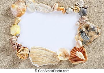 夏, 殻, スペース, 浜, フレーム, ブランク, コピー, ボーダー