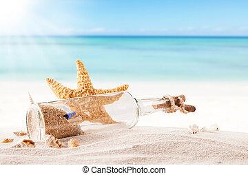 夏, 浜, ∥で∥, strafish, そして, 殻