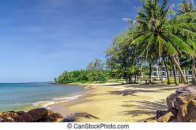 夏, 浜, 概念, 休暇, トロピカル
